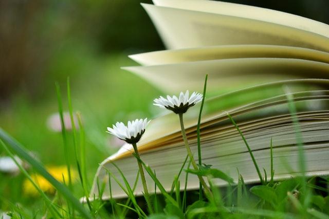 Livros Evangélicos Que Você Precisa Ler Em Sua Vida